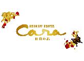 【公式サイト】リゾートホテルカーラ|ホテル/ラブホ